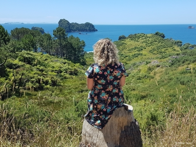 Cathedral Cove Walk view