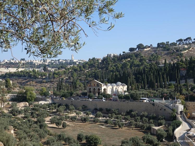 Church of All Saints and Gethsemane Jerusalem