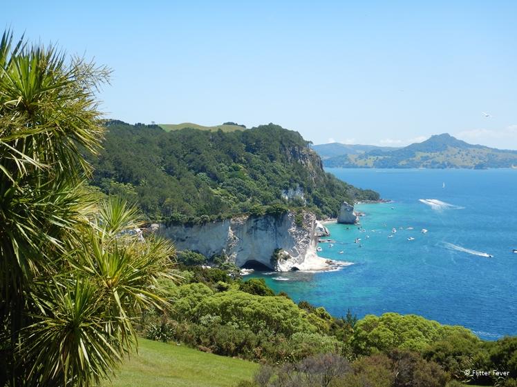 Coromandel Peninsula coast line view