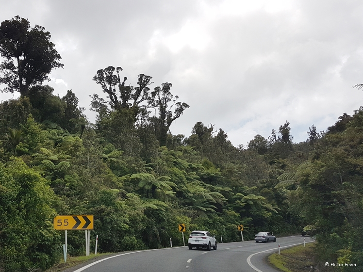 On the way to Hahei, Coromandel Peninsula - Highway 25