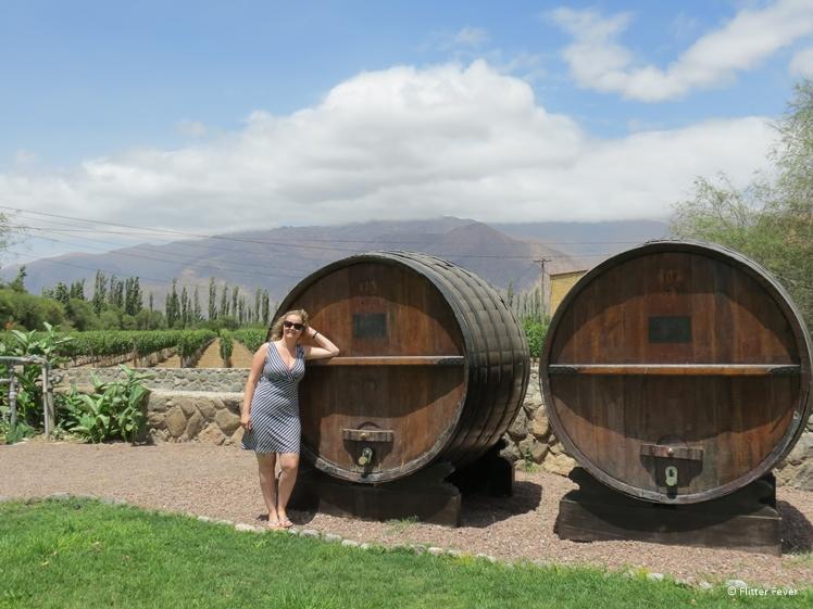 Wine barrels at El Esteco winery Cafayate