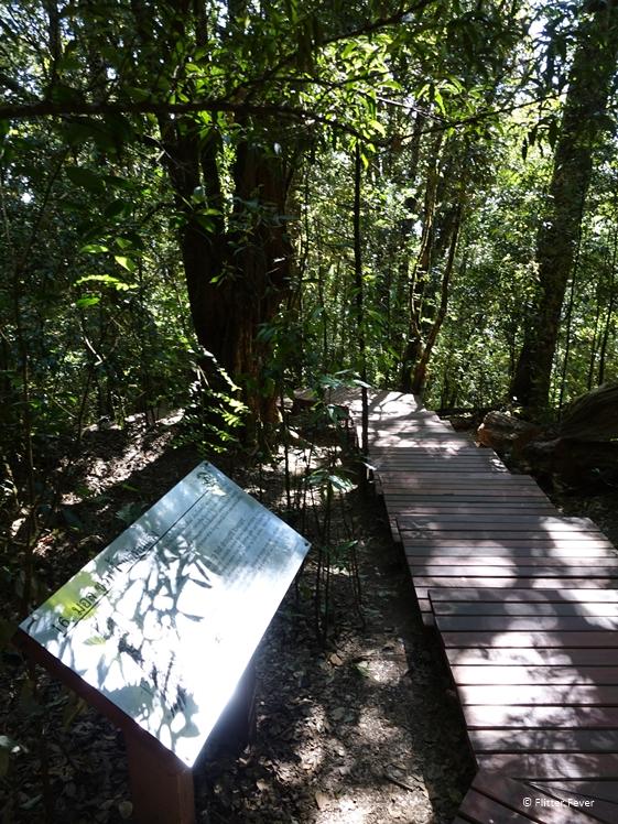 Informative signs at the Kew Mae Pan Nature Trail
