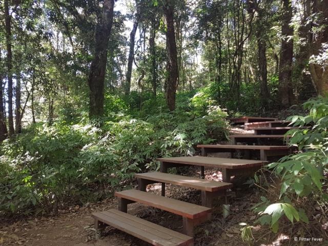 Kew Mae Pan Nature Trail forest wooden path Chiang Mai Thailand