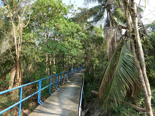 Not every bicycle path on Bang Kachao has a railing on each side