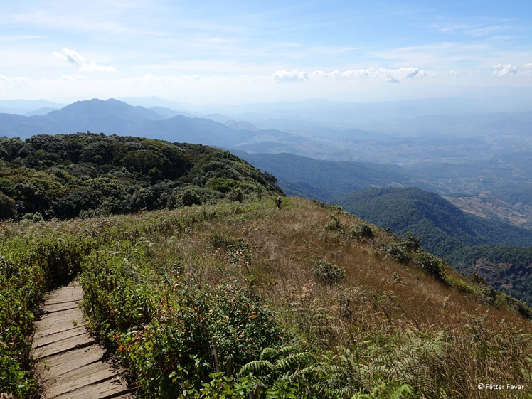 Path towards point 10 of Kew Mae Pan Nature Trail in Doi Inthanon National Park