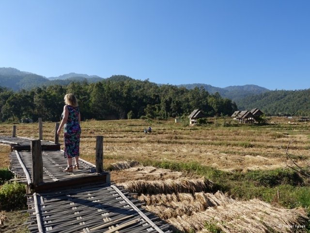 Walking the Bamboo Bridge in Pai
