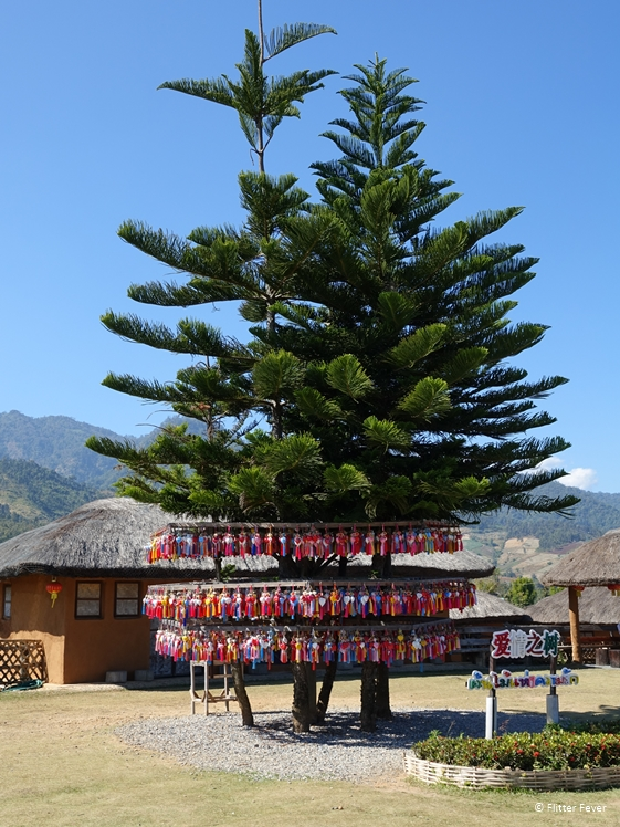 Wish tree at Yun Lai view point Pai Thailand