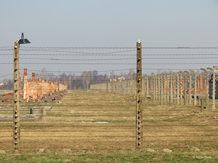 Barbwire and remains of barracks at Auschwitz-II