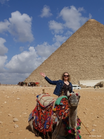 Camels and Pyramids make a nice Egyptian combo