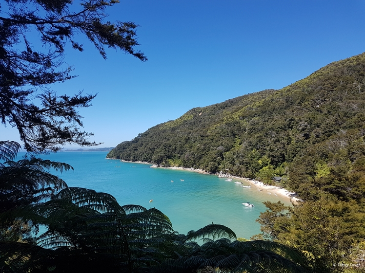 View on bay in Abel Tasman National Park, New Zealand