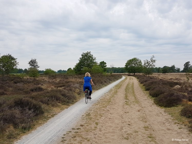 Cycling at the Balloerveld Drentsche Aa
