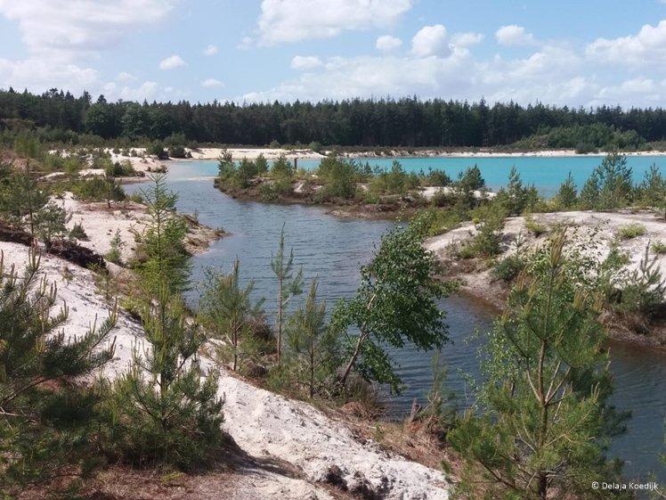 Difference in color water t Nije Hemelriek lake in Forestry Gieten Borger Drenthe