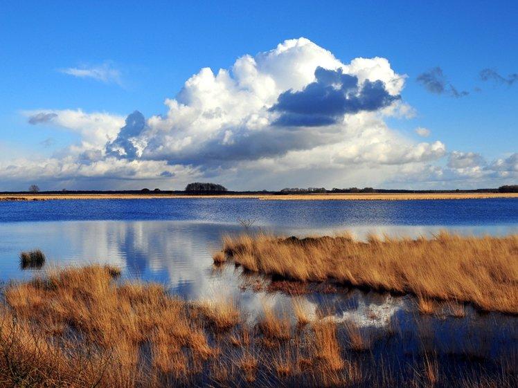 National Park Dwingelderveld Drenthe