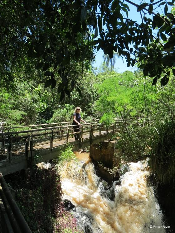 Lower Trail Iguazu Falls path above waterfall