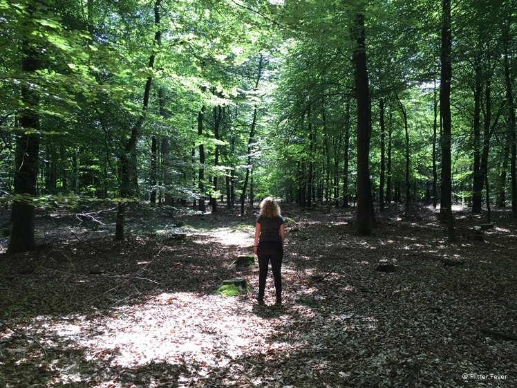 Me in the Gieten Borger forest