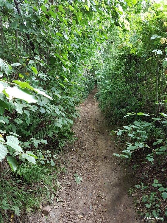 Savelsbos Rijckholt path