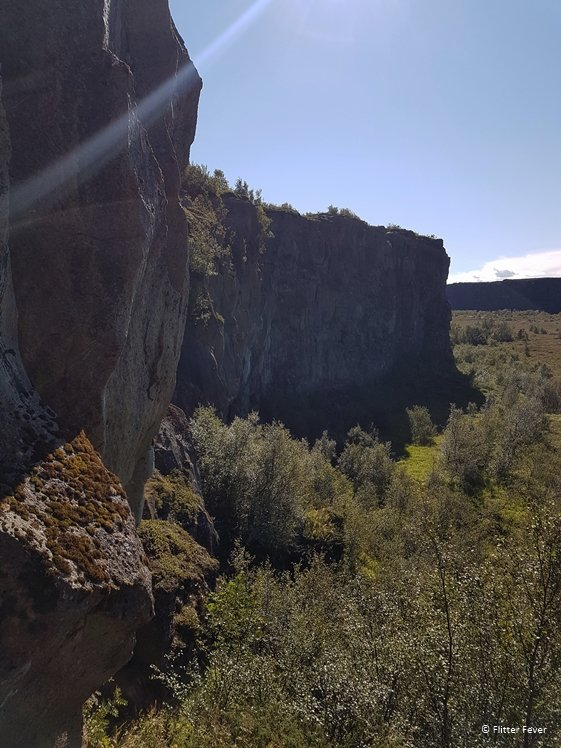 Asbyrgi Canyon gorge wall seen from the cliff staircase