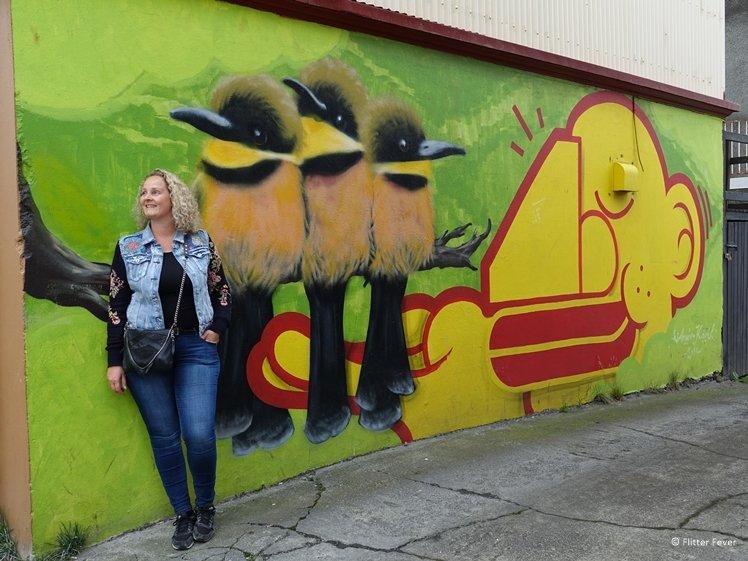 Birds street art Reykjavik
