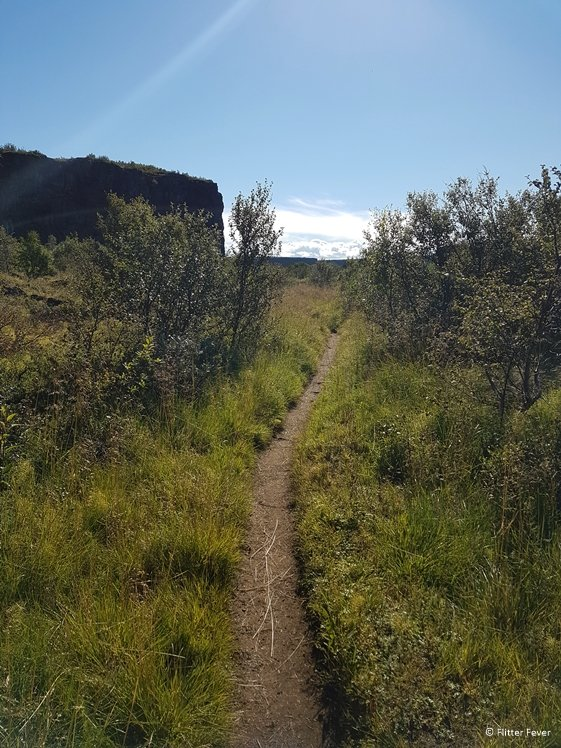 The path towards the gorge wall staircase becomes increasingly overgrown
