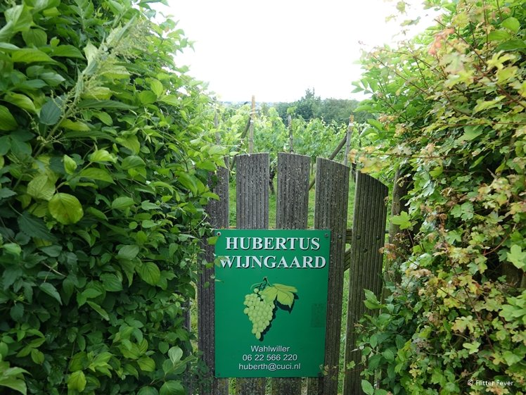 Hubertus vineyard in Wahlwiller