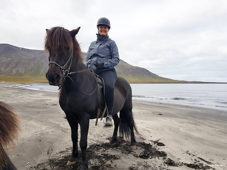 Photobombed by a horse on a black beach on Iceland