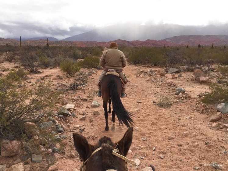 Riding behind my gaucho towards the Andes Argentina