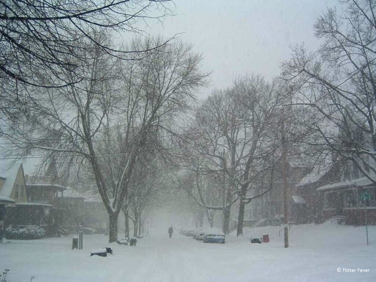 Snow storm in a street in Madison in January