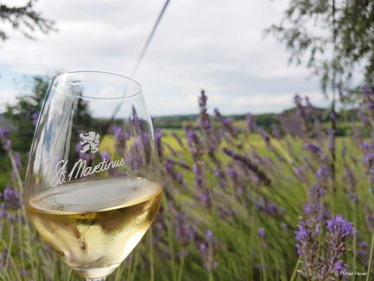 Kwaliteitswijn is zeker te vinden in Nederland