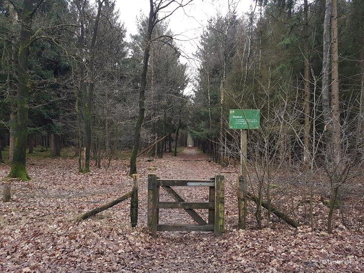 Roekel forest gate Otterlo Hoge Veluwe