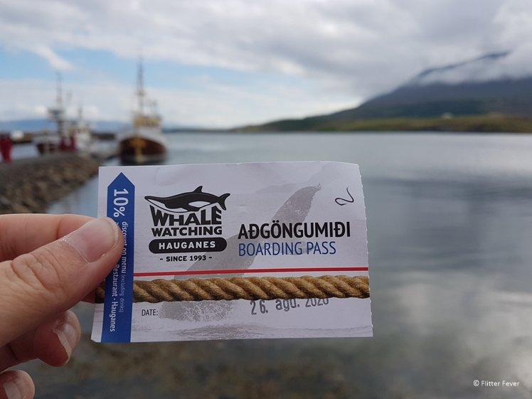 Hand houdt een kaartje voor walvissen spotten in Hauganes, IJsland vast