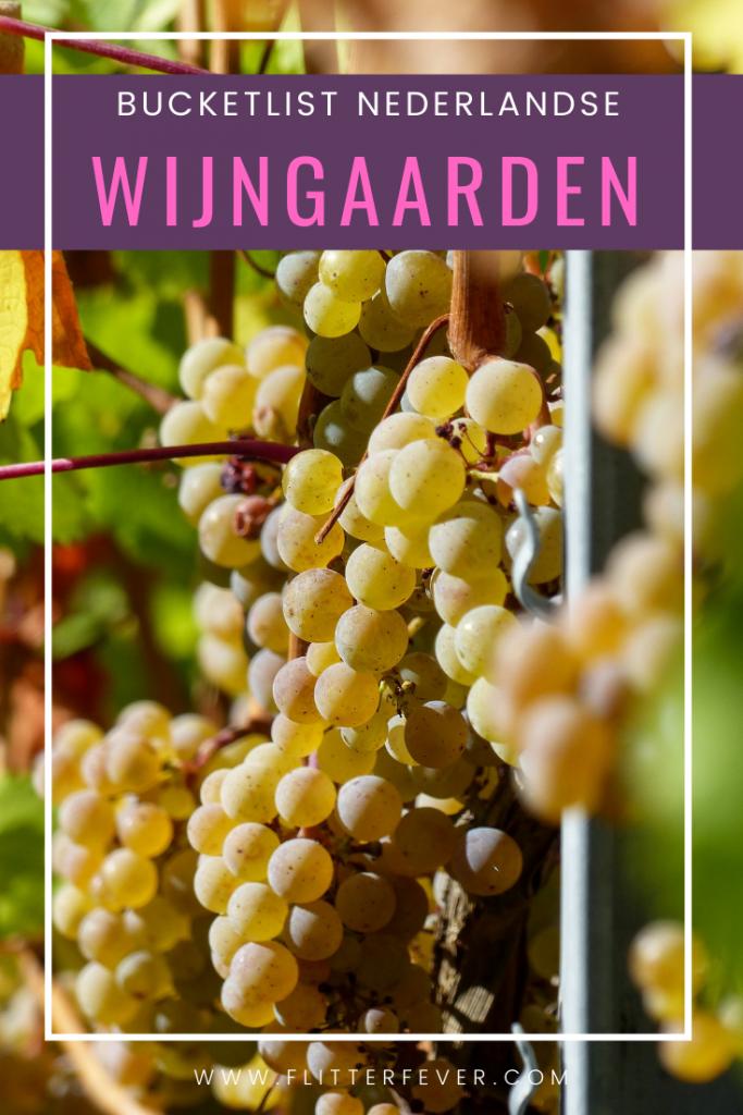 Dutch vineyards for your Pinterest bucket list