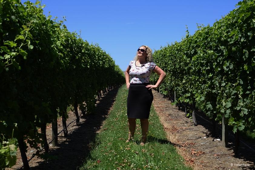 Visiting a Dutch vineyard