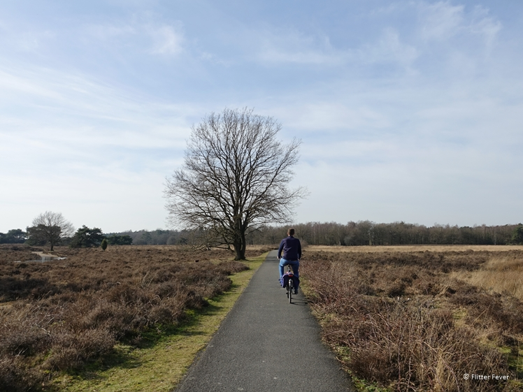 Cycling between Terhorsterzand and Makkumerplas