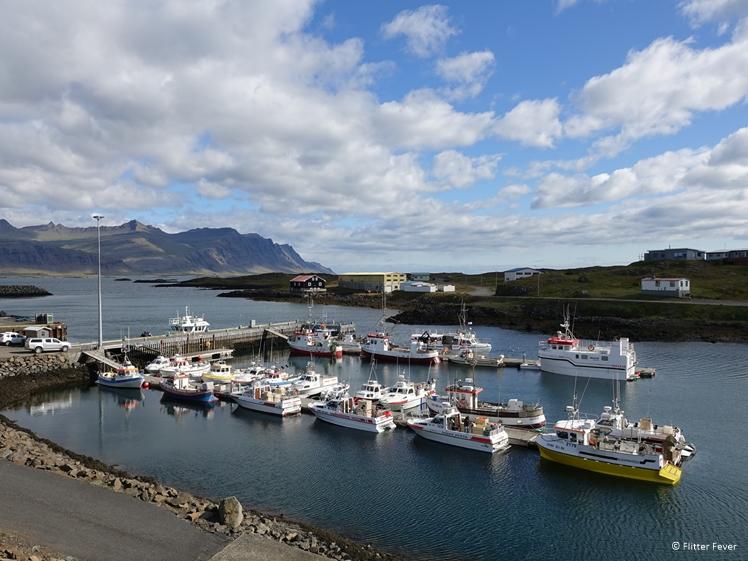 Haventje van Djúpivogur in zuidoost IJsland