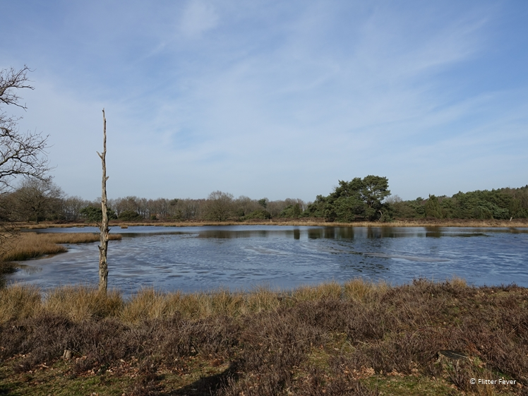 Makkumerplas Central Drenthe