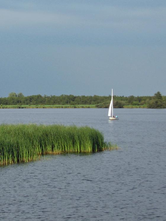 Bootje varen in Nationaal Park Alde Feanen Friesland