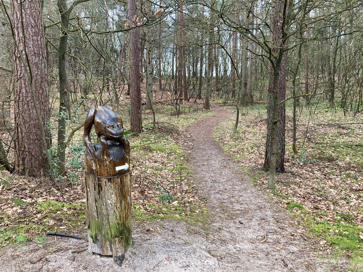 Frog shows the way in the Drents Friese Wold National Park family walking route