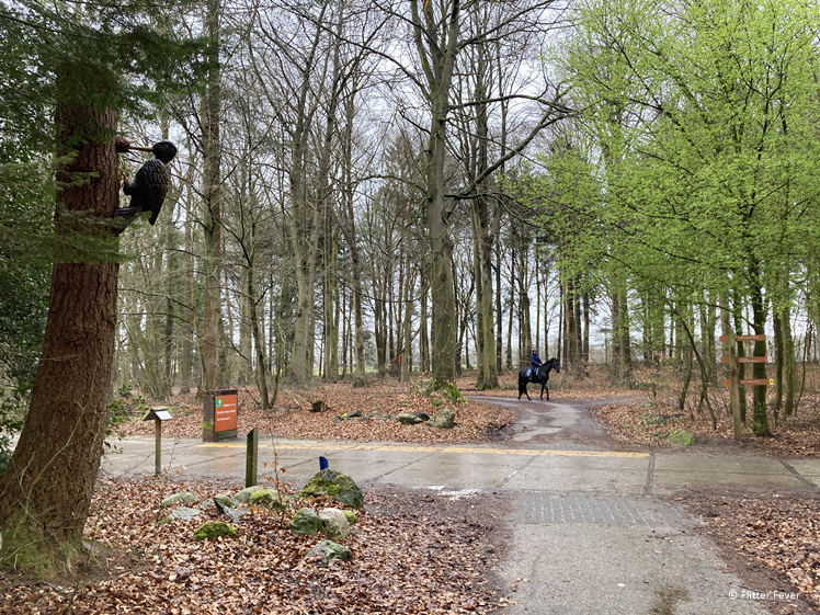 Recreation in the Drents-Friese Wold National Park on a winter day