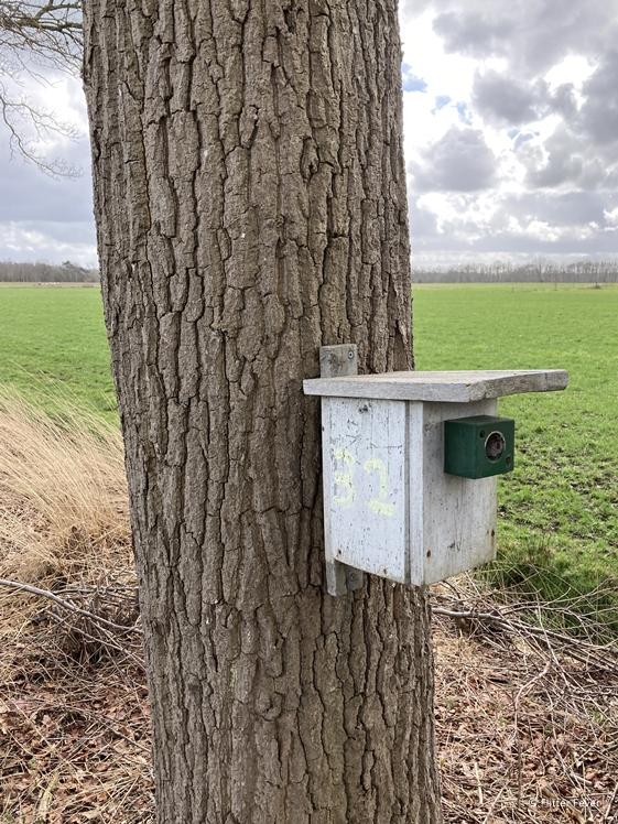 Vogelhuisje aan boom wandelroute Tussen Egypte en Frankrijk