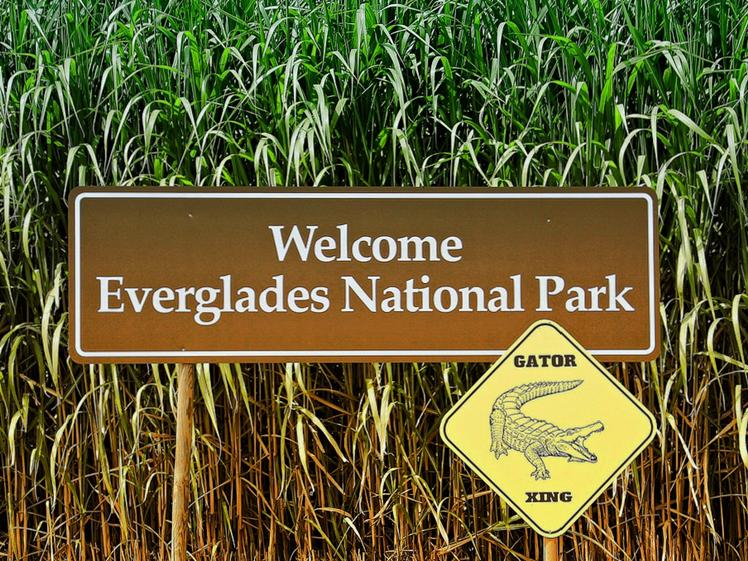 Everglades National Park Florida round trip