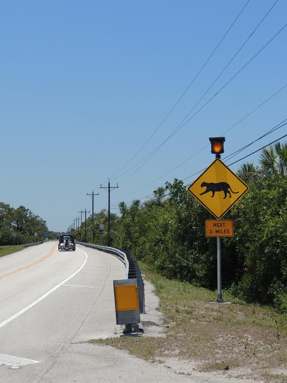 Lynx verkeersbord in Florida