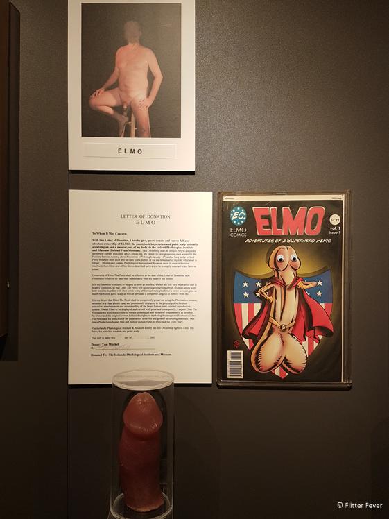 Elmo in het IJslandse Penis Museum in Reykjavik