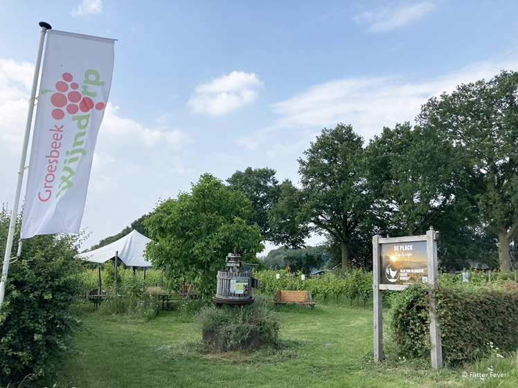 Groesbeek Wijndorp - Wijngaard De Plack