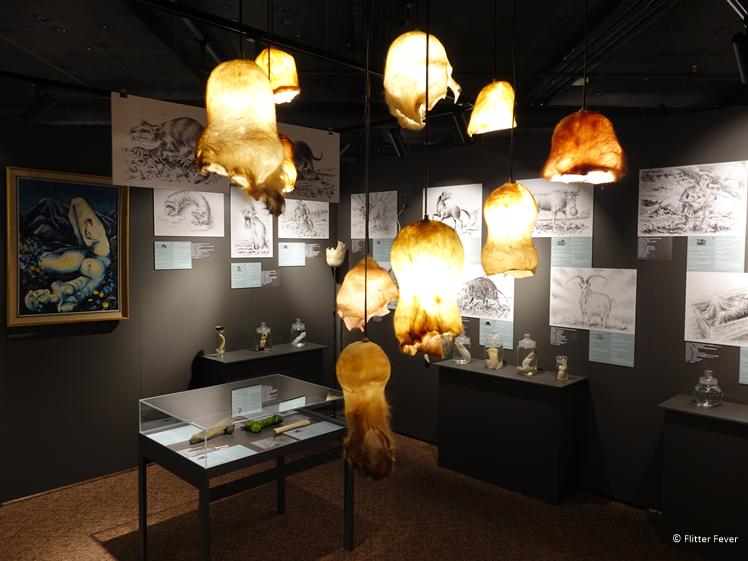 Lampenkappen gemaakt van stierenballen in het Penis Museum IJsland