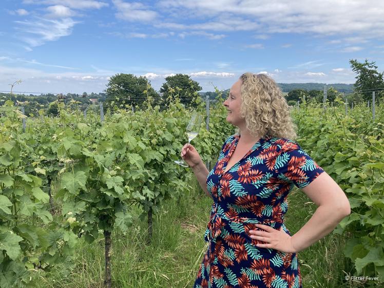 Plezier in de wijngaard