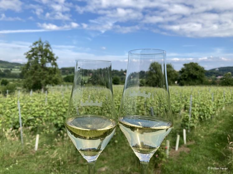 Proost op de mooie wijngaard van Domein Holset