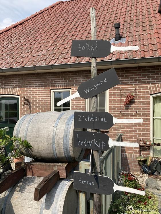 Wijngaard De Plack en Betsy's Kip Groesbeek