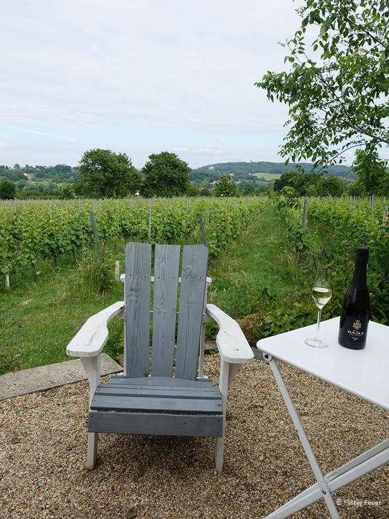 Wijnproeverij bij Domein Holset in Lemiers Zuid-Limburg