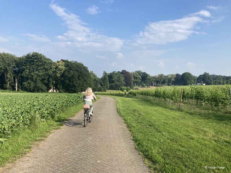 Met de e-bike onderweg naar Wijnhoeve de Holdeurn Groesbeek Berg en Dal