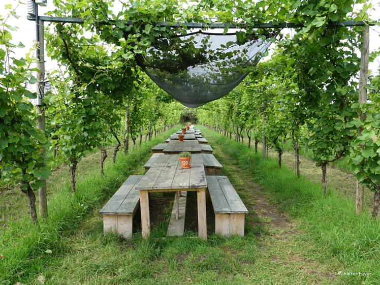 Picknicktafels in Wijngaard De Colonjes Groesbeek
